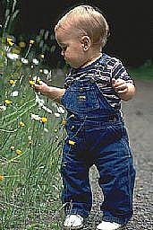 toddler-flowers_1