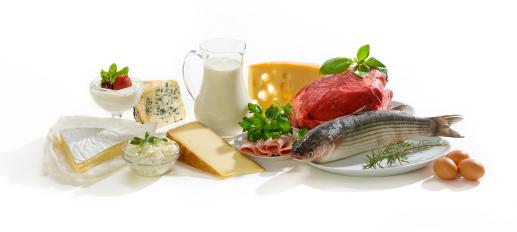 Primal_Diet