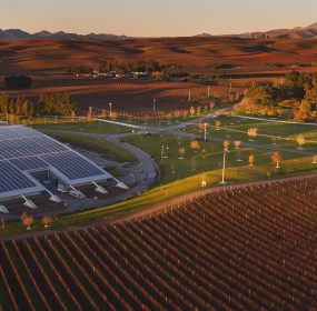 yealands-solar-array-aerial-view