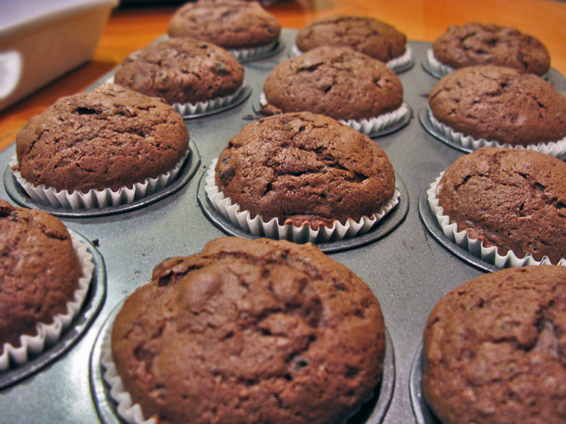Double Chocolate Muffins fresh ideas