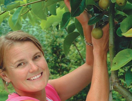 Fresh Ideas Fruit Tree Sales increase by 100%