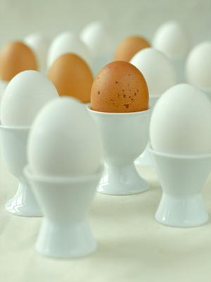Fresh Ideas Why do we eat eggs?