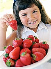 Child Food Allergies on the rise fresh ideas