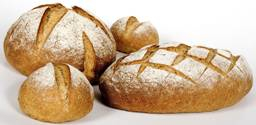 Fresh Ideas Fresh and Genuine Sourdough Bread
