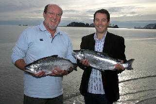 NZ King Salmon - Best feeesh in Sydney fresh ideas
