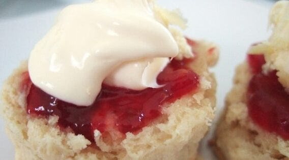 Easy Camping Scones Recipe Fresh Recipes Nz