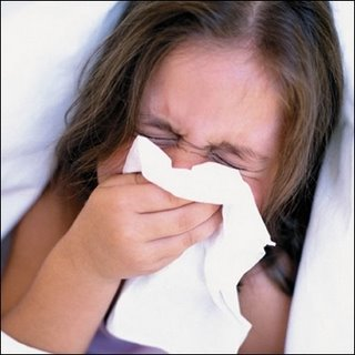 fresh ideas A herbal cure for hayfever sufferers