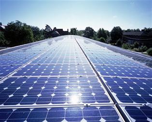 Fresh ideas woolworths going solar