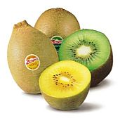 Early start brings another successful kiwifruit season fresh ideas