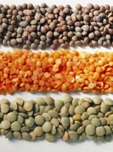 lentils3