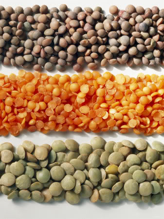 Ceres Series What are Lentils ? Fresh ideas
