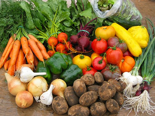 Report names top 4 vegetables fresh ideas