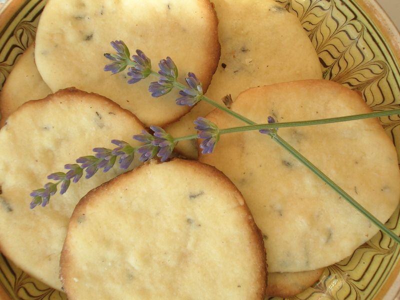 Lavender Biscuits fresh ideas