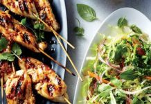 Chicken Kebabs with Mexican Slaw