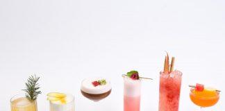 Fruit Spritzer Cocktails and Mocktails