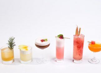 Fruit Spritzer Cocktails and Mocktails