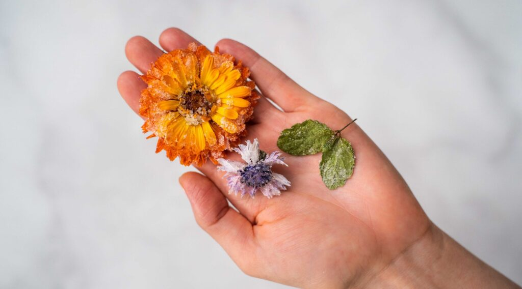 An orange flower, purple flower and green leaves on a womans palm